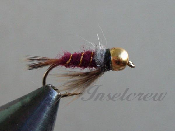 Alder Larva