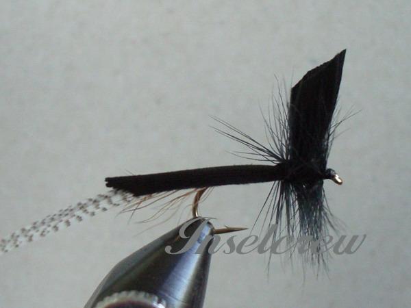 Black Mayfly Dun