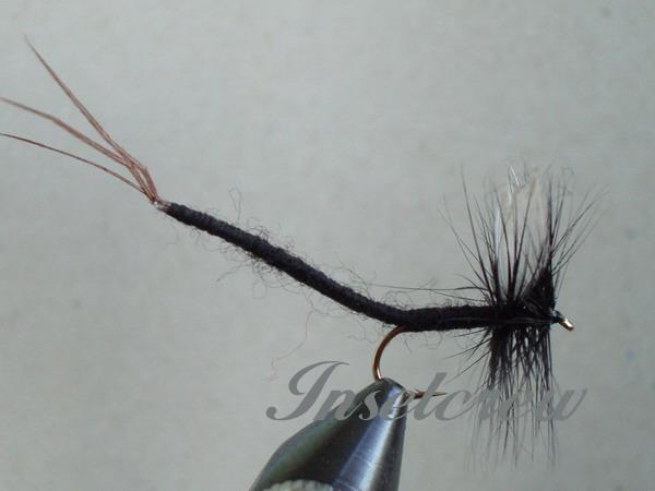 Black Gnat Extended Body Mayfly
