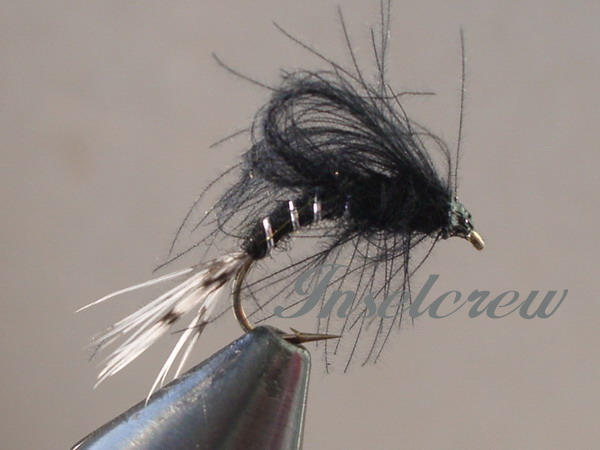 C.D.C. LOOPWING EMERGER BLACK