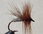 WOOD CHUCK CADDIS