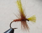 POLY CADDIS