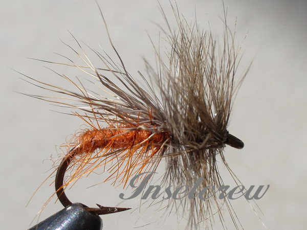 DELTA WING CADDIS