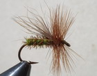 GRAY ELK CADDIS