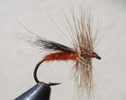 OREGON ORANGE CADDIS
