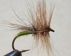 DARK CADDIS