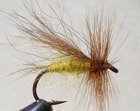 DESCHUTES CADDIS