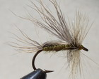 CREAM SACO CADDIS