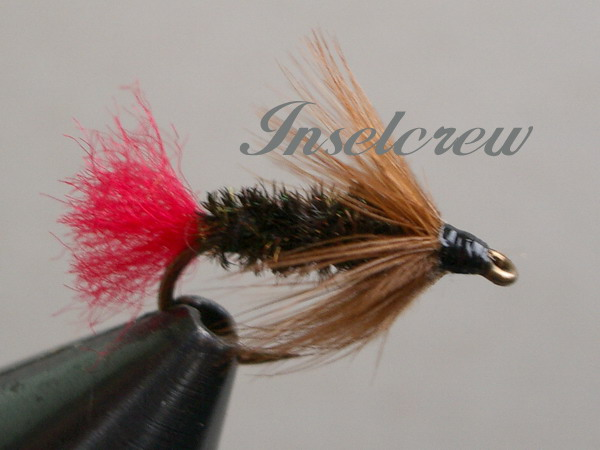 Brown Hackle Peacock