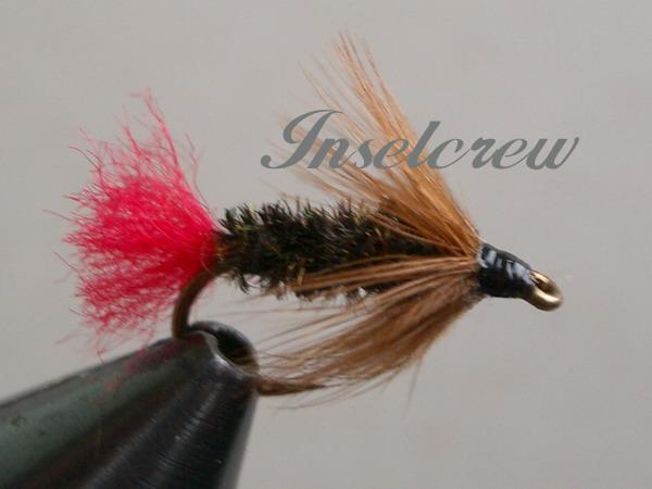Brown Hackle Peacock