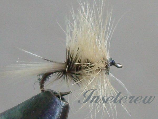 BADGER SPIDER