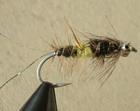 Danish Seducer black yellow Spot