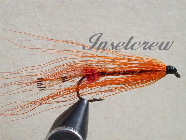 COD Shrimp orange