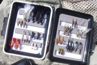 Forellen-Spezialbox