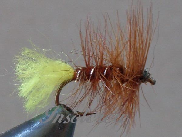 Brown Palmer