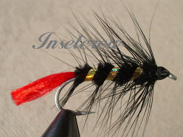 Black Thunder Trout