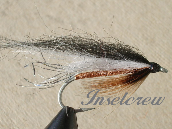 First Fish brown
